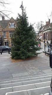 Christmas tree in Wellingborough by Marc Bazeley