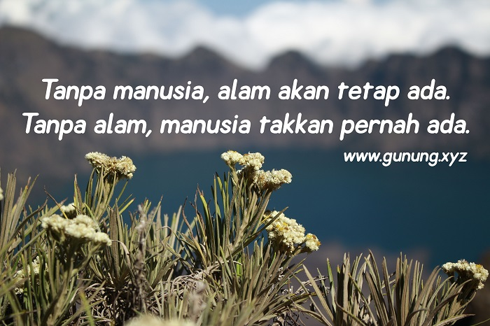 Kata Kata Tentang Alam Pegunungan