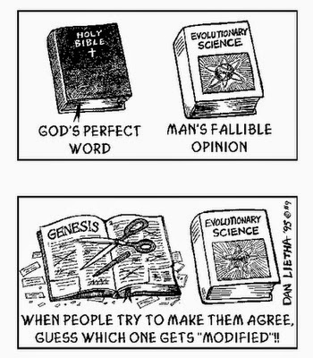 Funny God's Perfect Word Cartoon