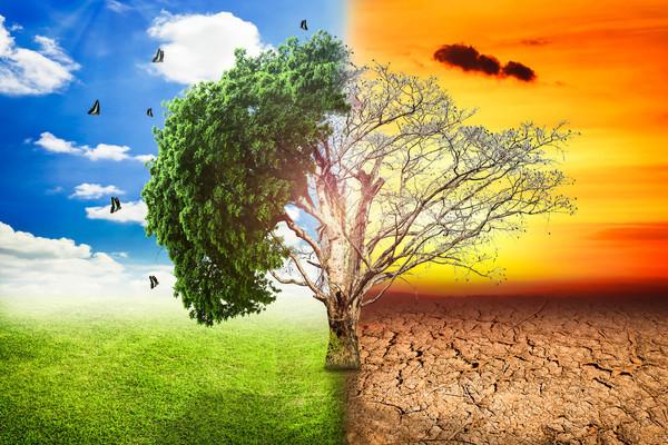 5 مواقع ستساعدك في تصور أهوال تغير المناخ