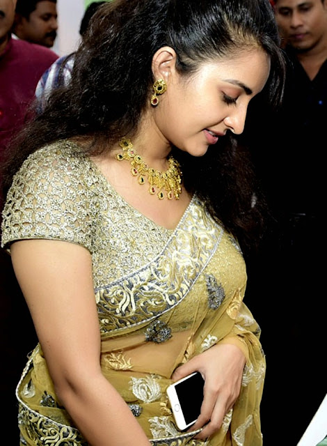 Beautiful Bhama hot in saree photos