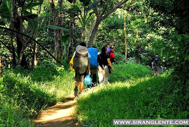 trails of Mt. Manabu