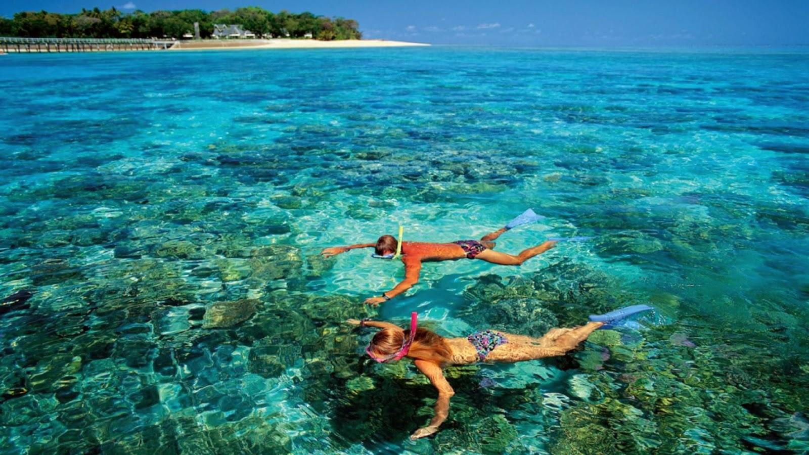 蘇美島必去:龜島+海鷗島一日遊