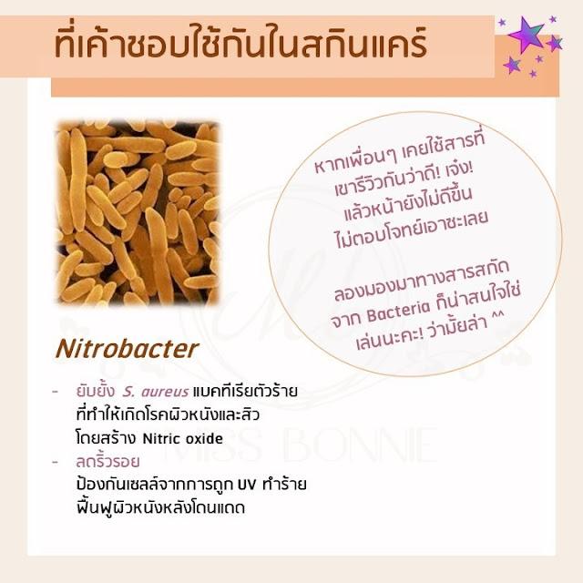 skinmicrobiome-bifida-lactobacillus-yogurtfacemask