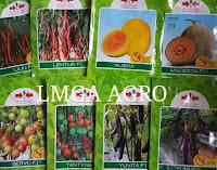 pupuk magnesium sulfate, manfaat pupuk, pupuk cap pak tani, benih hibrida, jual pupuk an benih, toko pertanian, online, lmga agro
