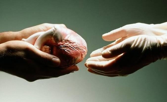 Ngerinya Kejahatan Pencurian Organ Tubuh Manusia di Moldova
