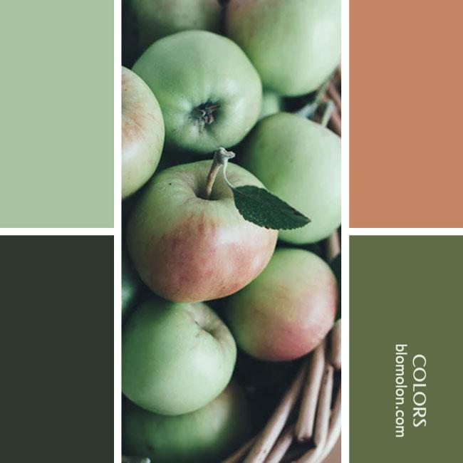 variedad_en_color_combinacion_28