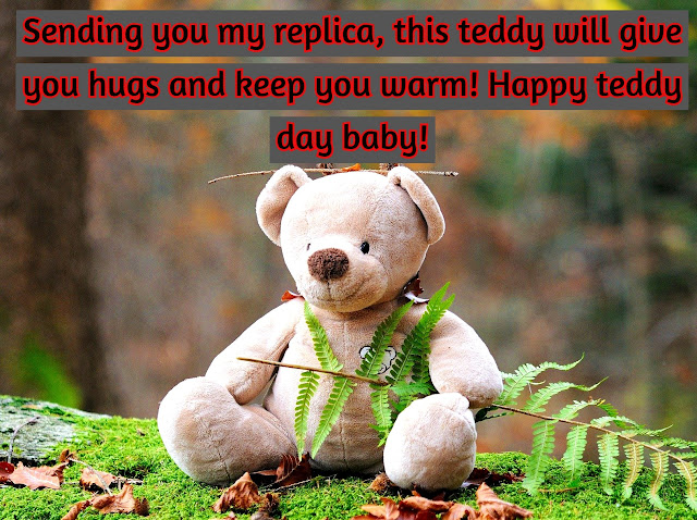beautiful  Teddy bear day images