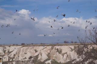 Travelog Turkey Green Tour in Cappadocia, Turki Pigeon Valley