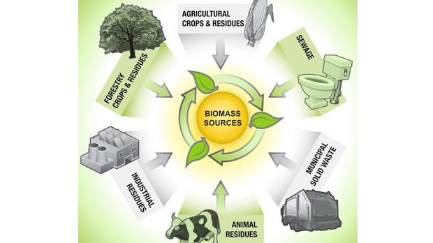 bioenergi biofuel bahan bakar nabati biomassa biogas