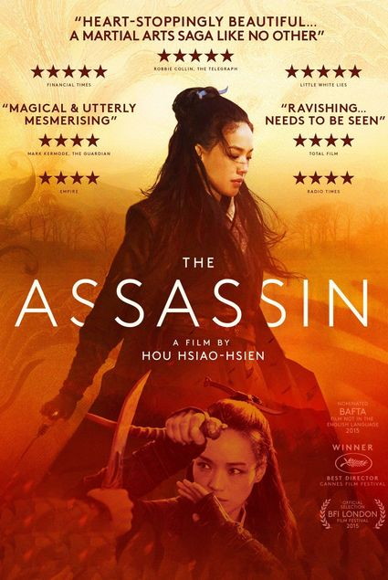 The Assassin (2015) Hindi Dubbed