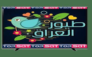 تردد قناة طيور العراقية الجديدة على النايل سات 2021