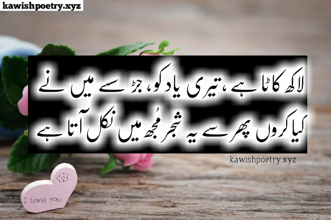 Sad Love Poetry In Urdu 2 Lines, Sad Poetry