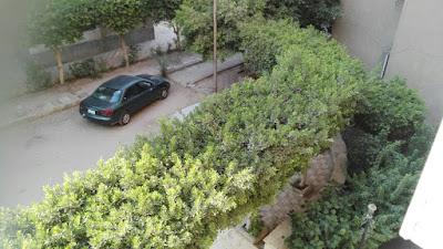 مساكن شروق النادى الاهلى  club Al Ahly housing