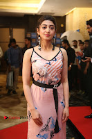Actress Pranitha Subhash Pos in Short Dress at SIIMA Short Film Awards 2017 .COM 0128.JPG
