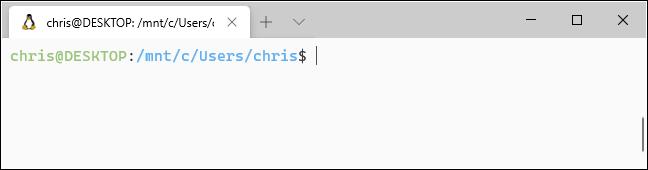 نظام ألوان فاتح مع خلفية بيضاء في Windows Terminal.