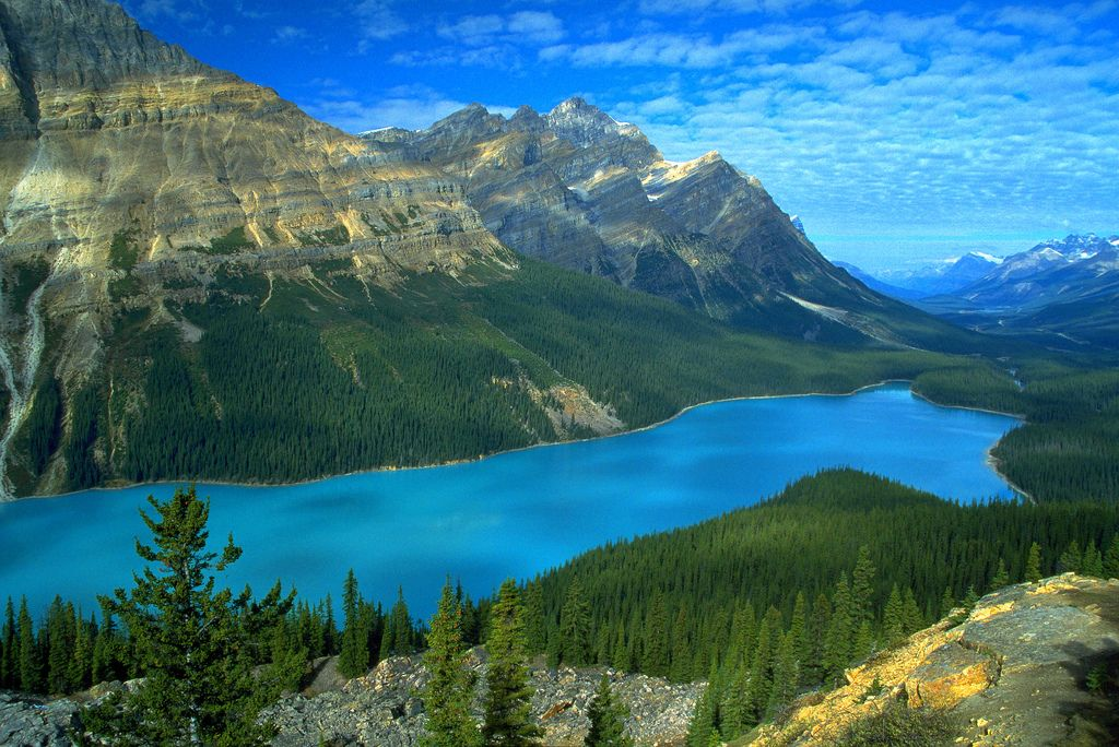 2. Peyto Lake, Alberta, Canada