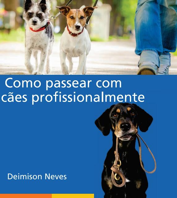 Como Passear Com Cães Profissionalmente