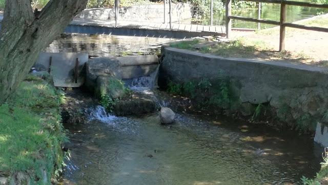 Riacho de água translucida