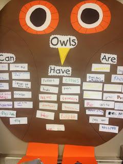 Owls! - First Grade Roars!