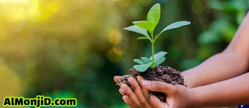 التلوث, الحفاظ على البيئة, زراعة, نظافة, تلوث من المصانع, الغازات, تلوث الجو, ثاني اكسيد الكربون, اهميه الحفاظ على البيئه