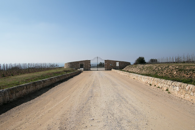 Azienda vinicola Gulfi