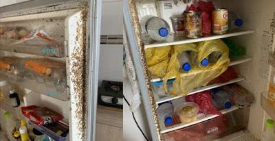 Bikin Merinding Lihat Isi Kulkas yang Ditinggal Selama 2 Bulan
