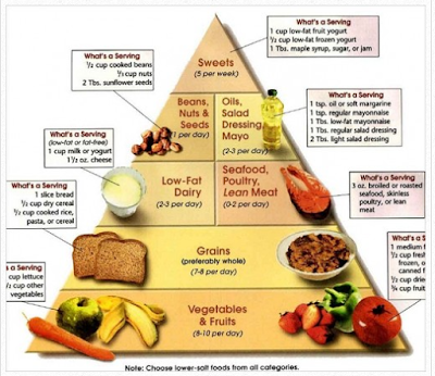 A healthy diet plan- The south beach low carb diet