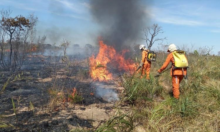 Área de proteção ambiental é atingida por incêndio na Chapada Diamantina
