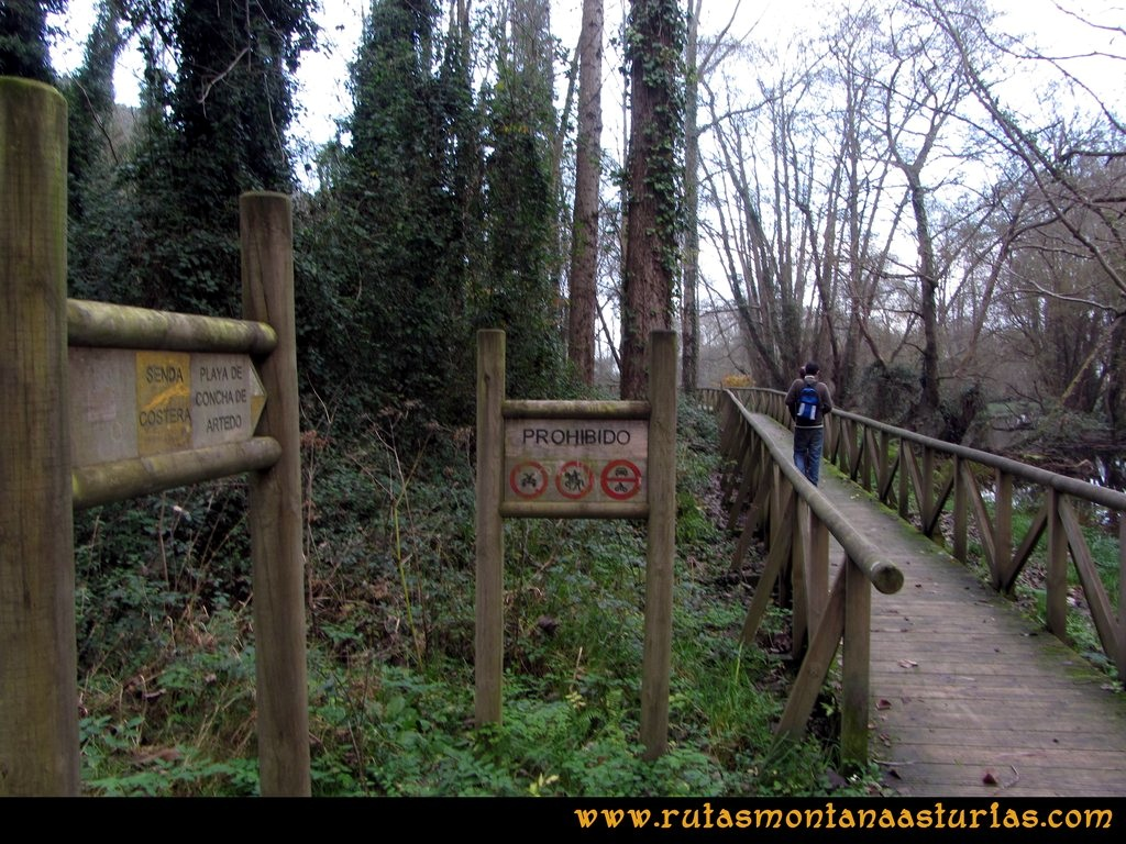 Ruta Artedo, Lamuño, Valsera: Camino de la playa de la Concha de Artedo