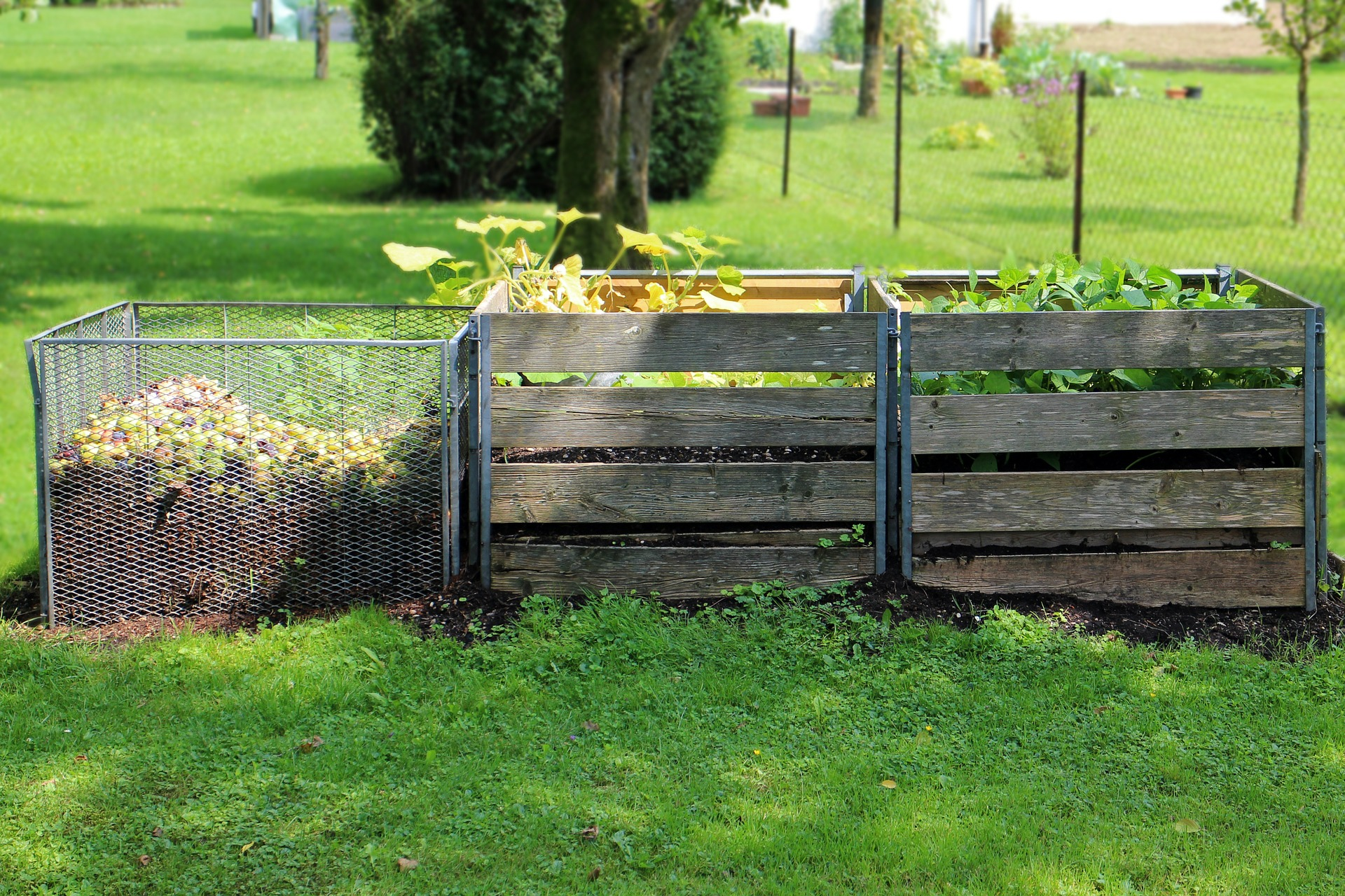 Compost Pile Tips