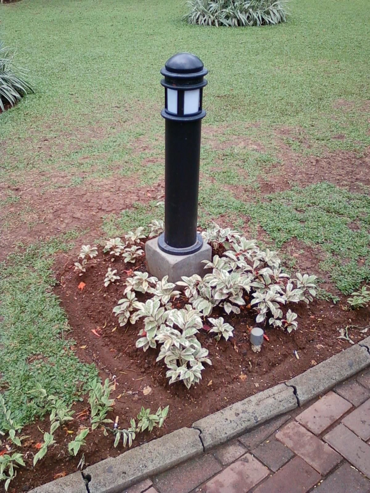 Taman Gedung Bri Tanaman Di Area Lampu Taman O2 Fresh