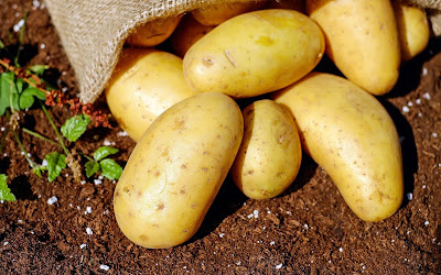 fresh potatoes widescreen hd wallpaper