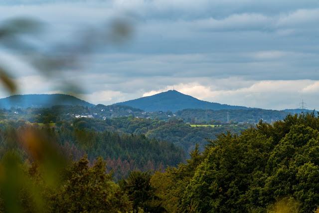 Wildwiesenweg – Eitorf | Wandern in der Naturregion-Sieg | Erlebniswege Sieg 18