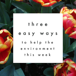 Three Super Easy Ways to Help the Environment this Week