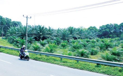 Wisata Bogor BArat