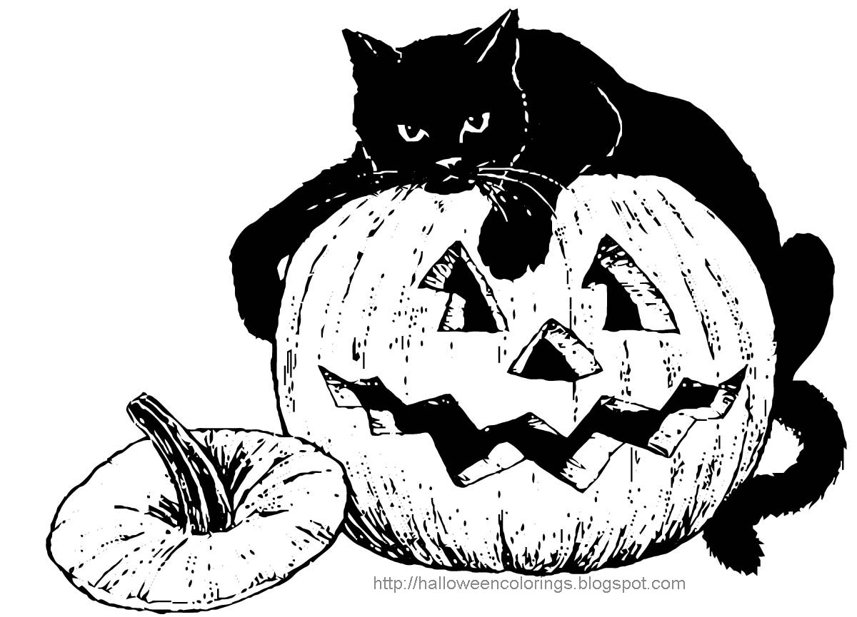 scary black cat coloring pages | HALLOWEEN COLORINGS