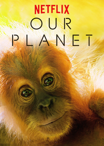 Our Planet 2019 S01 English Complete 1.2GB NF WEB-DL Download