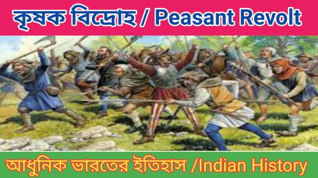 কৃষক বিদ্রোহ | Peasant Revolt | Modern Indian History