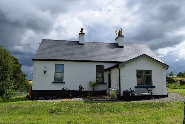 house sitting ireland