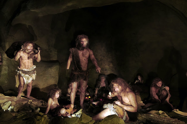 Neanderthals may have had lower threshold for pain