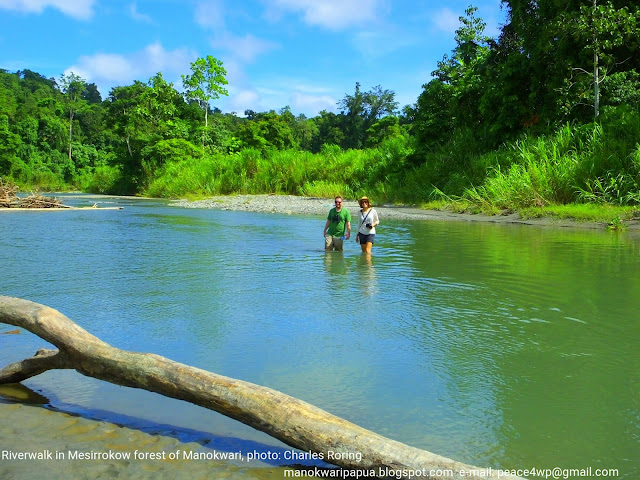 British tourists in Manokwari's river