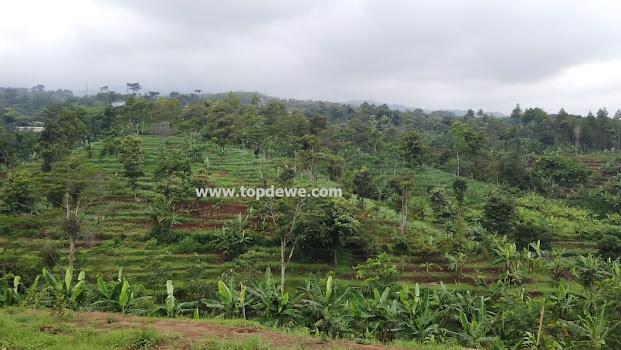Pemandangan alam wisata poetoek Soeko Trawas Mojokerto