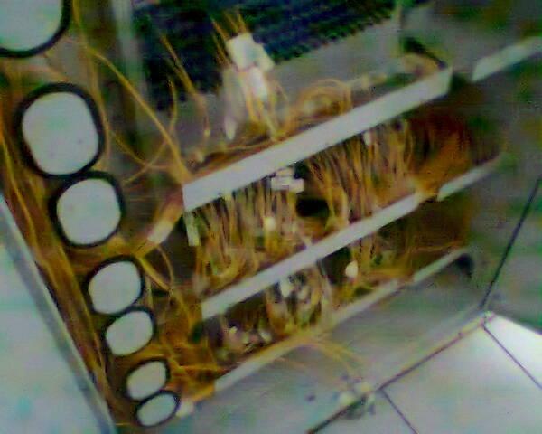 Membantu Teknisi Melakukan Pelurusan Dan Pemasangan Kabel Fiber Optik Dari G-PON Ke FTM - Gateway Ilmu