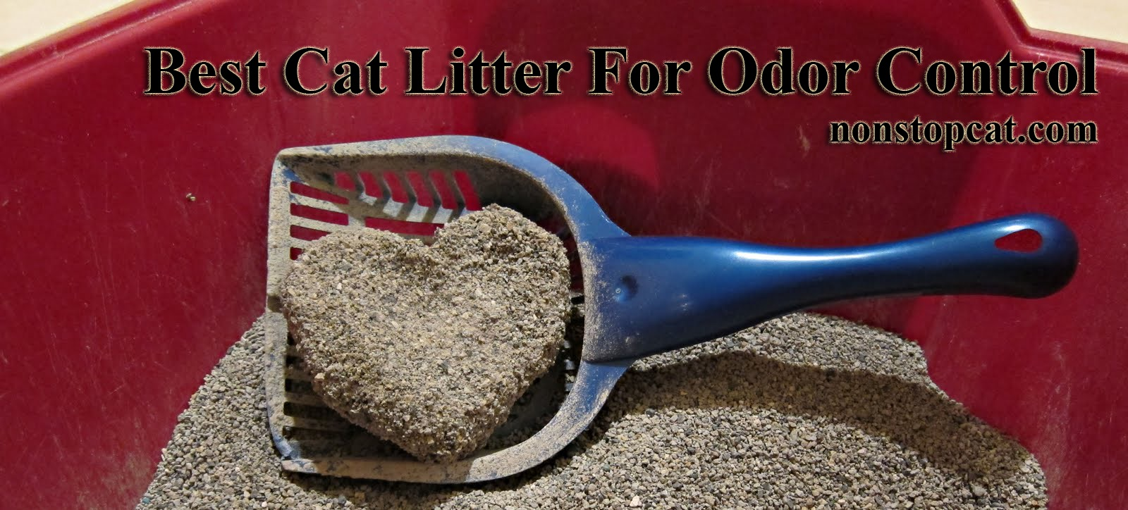 Best-Cat-Litter-For-Odor-Control