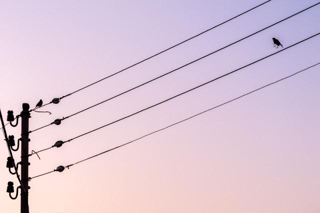 El punto equilibra, foto de Carlos Larios