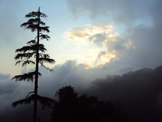 view from mcleodganj