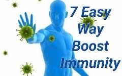 Immune System Boost   7 Easy Way Boost Immunity   Newskatha - নিউজ কথা