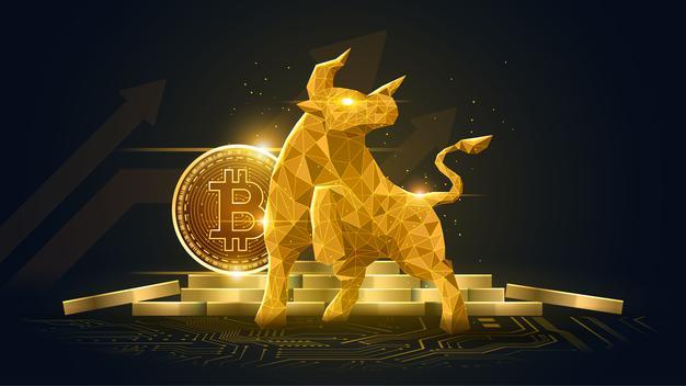 kurumsal-bitcoin-yatirimcilarinin-elinde-tuttugu-bitcoin-miktari