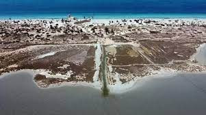 wildlife, Libya's Farwa island